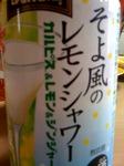 そよ風のレモンシャワー.jpg